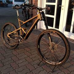 Cannondale Gold.jpg